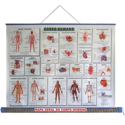 Mapa Laminado: Corpo Humano - ECA