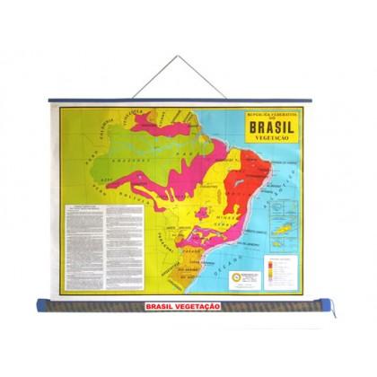 Mapa Laminado: Brasil Vegetação - ECA