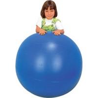 Bola Bobath em Plástico 70cm c/1 Pç-BM